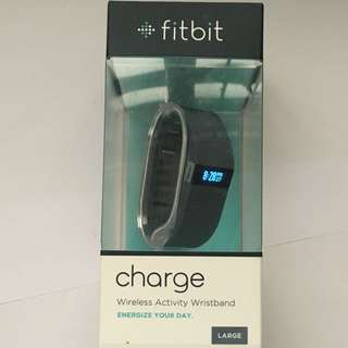 Fitbit Charge (large) (blue)