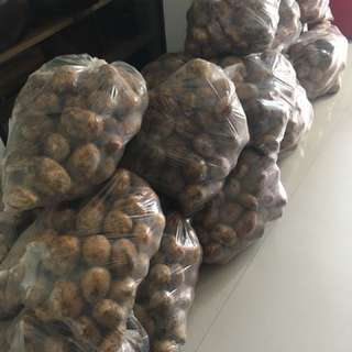 RUSH Potatoes for sale