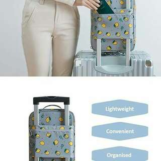 Pre order shoes travel bag