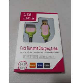 iPhone 4 Charger (Pink/Green)