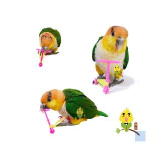 Parrot Mini-Scooter (normal mailing inclusive)