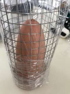 Discus Breeding Cone with Cage