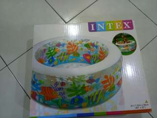 Intex big pool padded aquarium