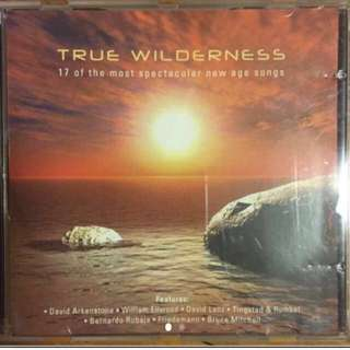 ( new age ) True Wilderness - 17 of the most spectacular new age songs ( CD )