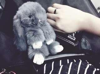 Furry bunny