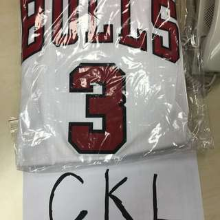 D wade Chicago Bulls Nba jersey