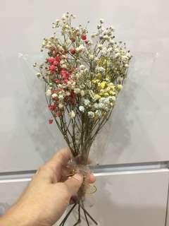 Mini dried baby breath flower
