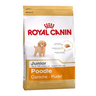 Royal Canin Poodle Junior Dry Dog Food