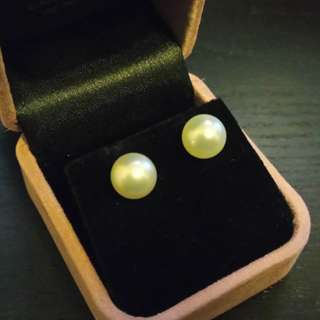 9mm Pure White South Sea Pearl Earrings in 18K White Gol / 9mm純白無瑕 南洋珠 18K金 耳環 100% NEW