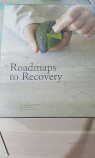 roadmaps to recovery