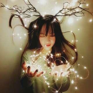 Onhand pixie copper fairy lights