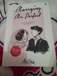novel mrrying mr.perfect