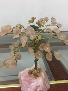 Rose Quartz Crystal Tree : Love