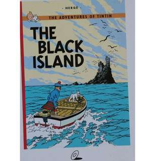 VCD    The Adventures of TinTin  : The Black Island