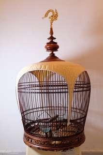 Merobok Siam cage