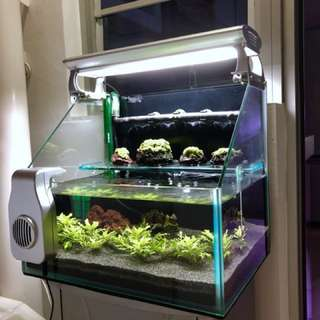 Fish Tank ( Custom Made )