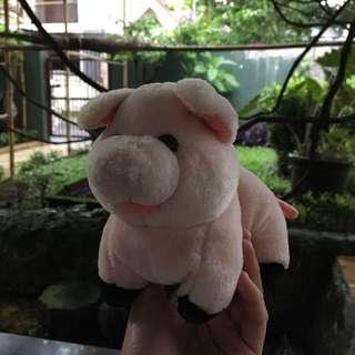 Pig Doll