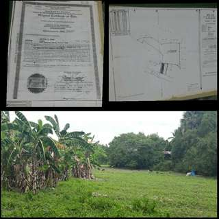 Vacant Lot for sale (Ideal for Bodega) ✅LOT AREA: 9,000 sq.m ✅Clean Title and updated tax declaration