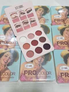 S.f.r Pro 9 color eyeshadow palette