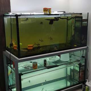 Fish tank 5.5x2.5x2.5/2ft c/w stand and pump