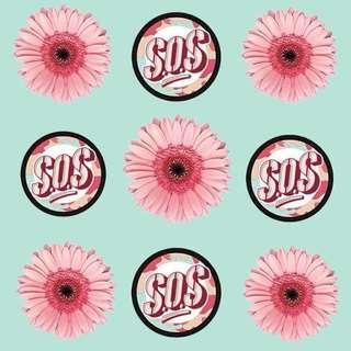 SOS SCRUB