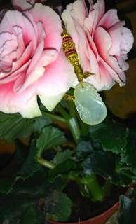 A貨翡翠玉石首飾吊墜(近冰種)