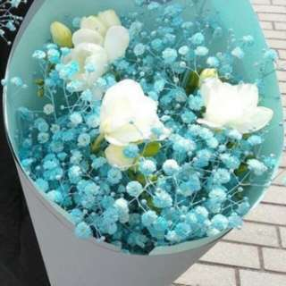 Blue baby breath and eustoma