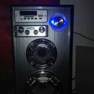 Portable speaker with microfon