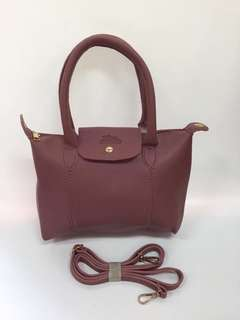 Long champ  size:12×7×3 inches