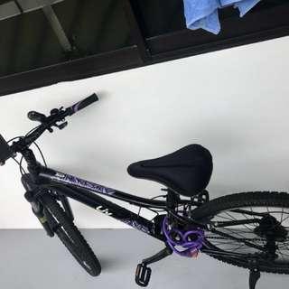 Giant Liv mountain bike 26 slightly used