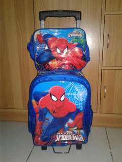 Trolley bag ( Repriced)