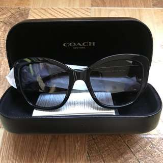 Coach Sunnies or Sunglasses