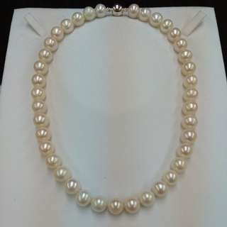 Fresh Water Pearl Necklace with Magnet Ball Clasp