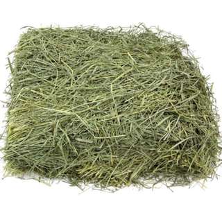 Fresh Timothy Hay (below retail pricing)