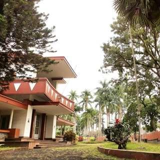 Dijual Properti di Ijen Boulevard - Tanah Luas di Tengah Kota Malang