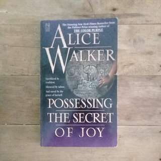 Possessing The Secret of Joy by Alice Walker