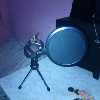 Desk top mic stand with pop filter