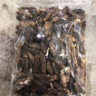 「西非海參-大」⭐有40斤⭐ (600克,約60-75條) 😱平均每條$10都唔駛  市場價$1200-$1300/斤