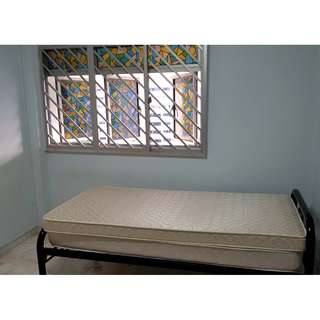 Blk 381 Clementi Ave. 5, 1 Rm, $850 for 2, $700 for 1, negotiable - Near MRT