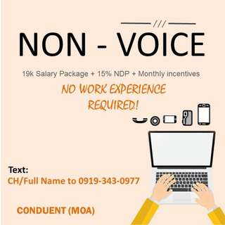 Tired of calls? Be our Non-Voice Agent