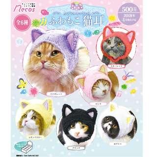 【預購Pre-Order】【日版Japan Verson】超可愛貓用頭套 貓耳 (一盒八件) 預計2018 4月到貨 Estimate Arrival time Apr 2018 (一盒八件)