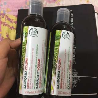 Rainforest Volume Shampoo