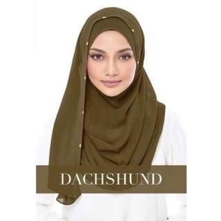 DUCHESS - DUCSHUND