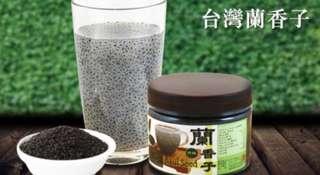 台灣蘭香子