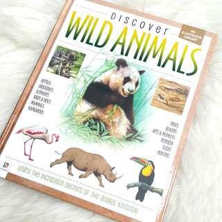 Discover Wild Animals