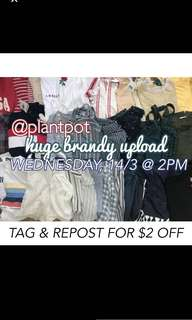 @plantpot Brandy Melville Upload