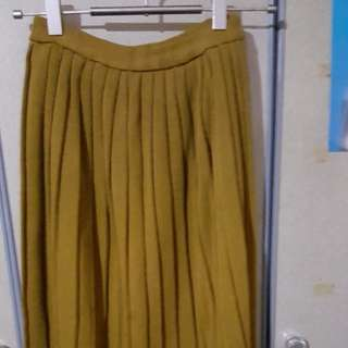 Pleated Skirt( wore 2x) as good as new