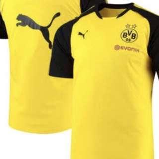 Dortmund training kit