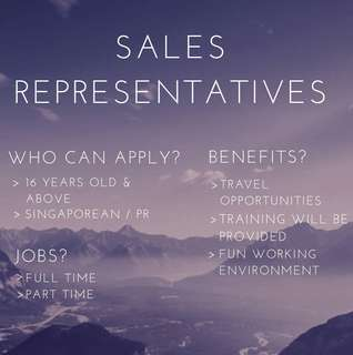 Sales Representatives