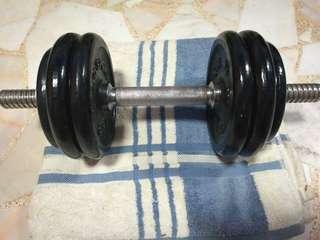Dumbells 12 kg